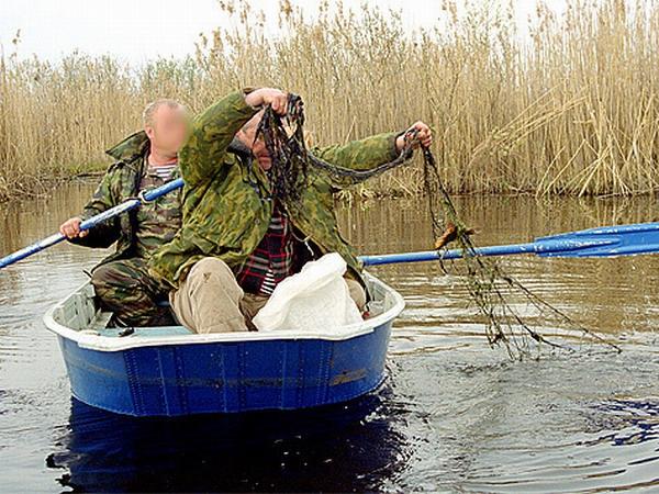как ловить рыбу в белоруссии
